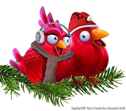 Nestexperten_Weihnachten.jpg